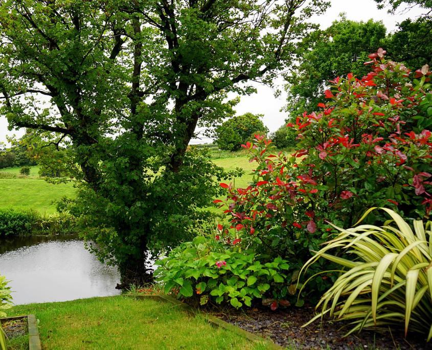 Een prachtige tuin die past bij je wensen