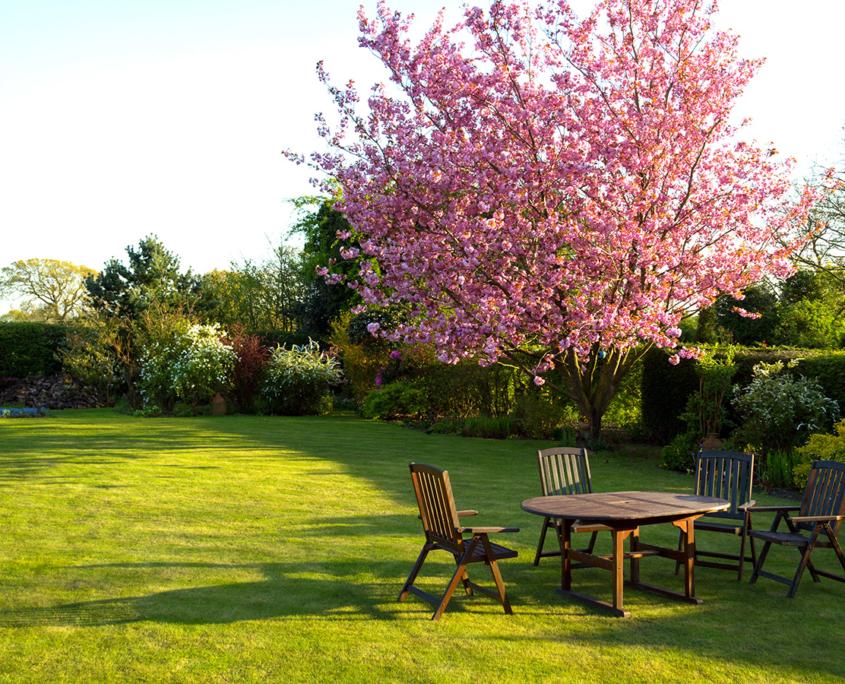 Tuin laten aanleggen door een hovenier op de Heuvelrug