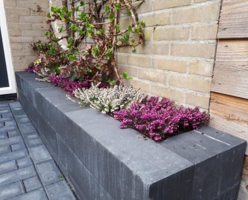 Tuinrenovatie met nieuwe bakken en beplanting